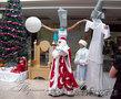 Трезвые Дед Мороз и Снегурочка на дом