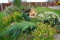Дизайн вашего участка и помощь по саду